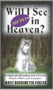 Will I See My Pet In Heaven
